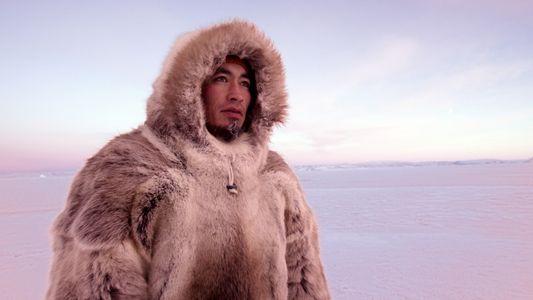 National Geographic estrena The Last Ice: Salvar el Ártico, el largometraje que narra la lucha de ...