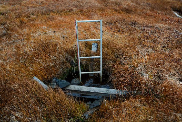 Bodega de permafrost