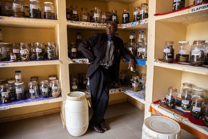 El herpetólogo Baldé Mamadou Cellou