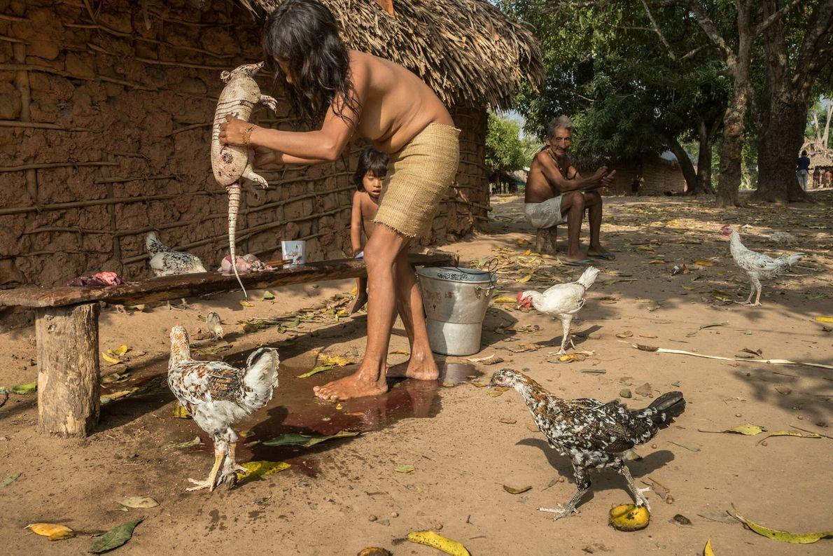 Una mujer awá limpia y despieza un armadillo