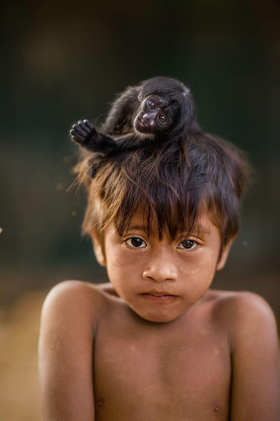Kaiau lleva una cría de sakí barbudo negro