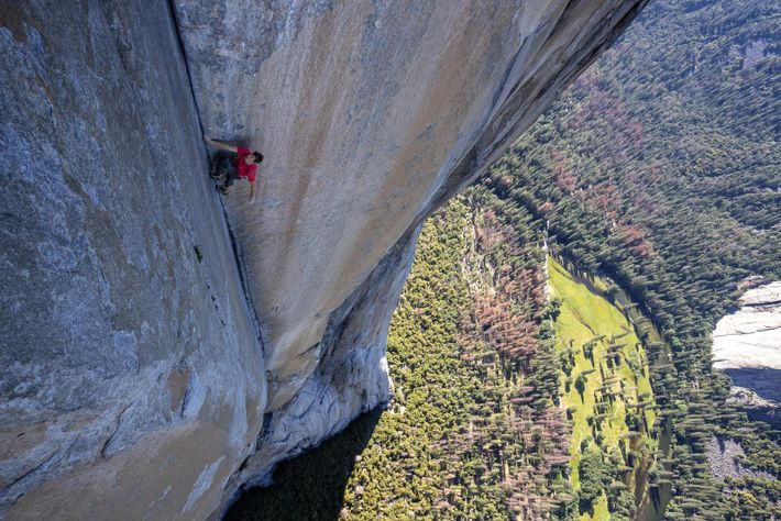 Free Solo - Enfréntate a tus miedos