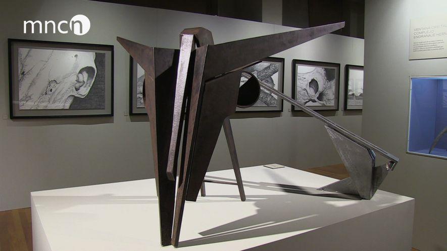"""Exposición """"Kranion"""""""