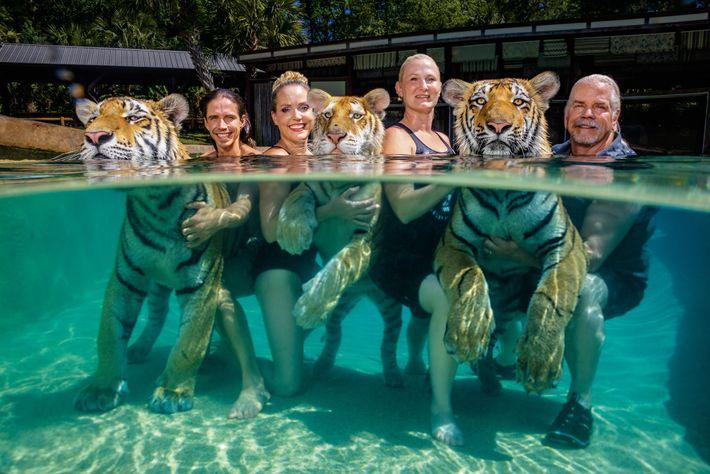 Antle posa con sus tigres y sus empleados