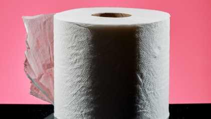 ¿Qué se usaba antes del papel higiénico?
