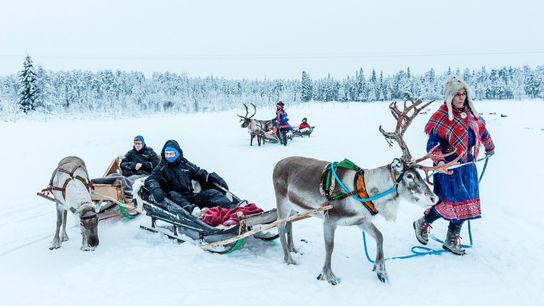 Turistas en un trineo de renos en la Laponia finlandesa