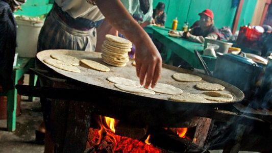 Los mejores alimentos del mundo maya