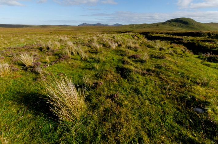 Fotografía de la península de A' Mhòine en Escocia