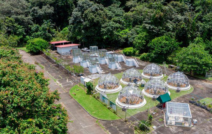 Instituto de Investigación Tropical del Smithsonian