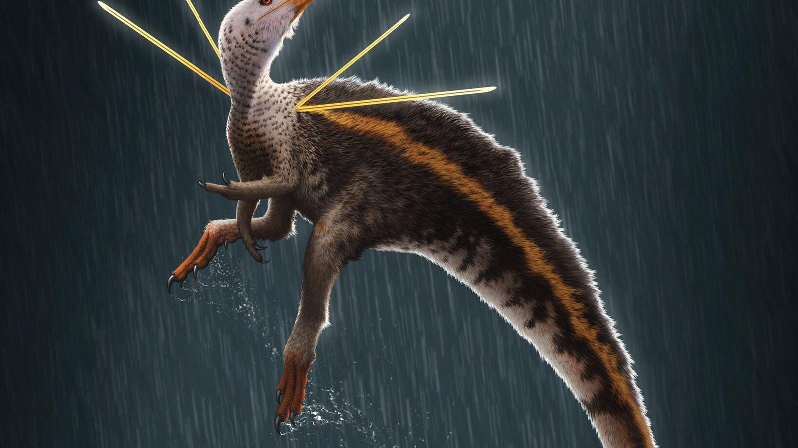 El dinosaurio Ubirajara jubatus