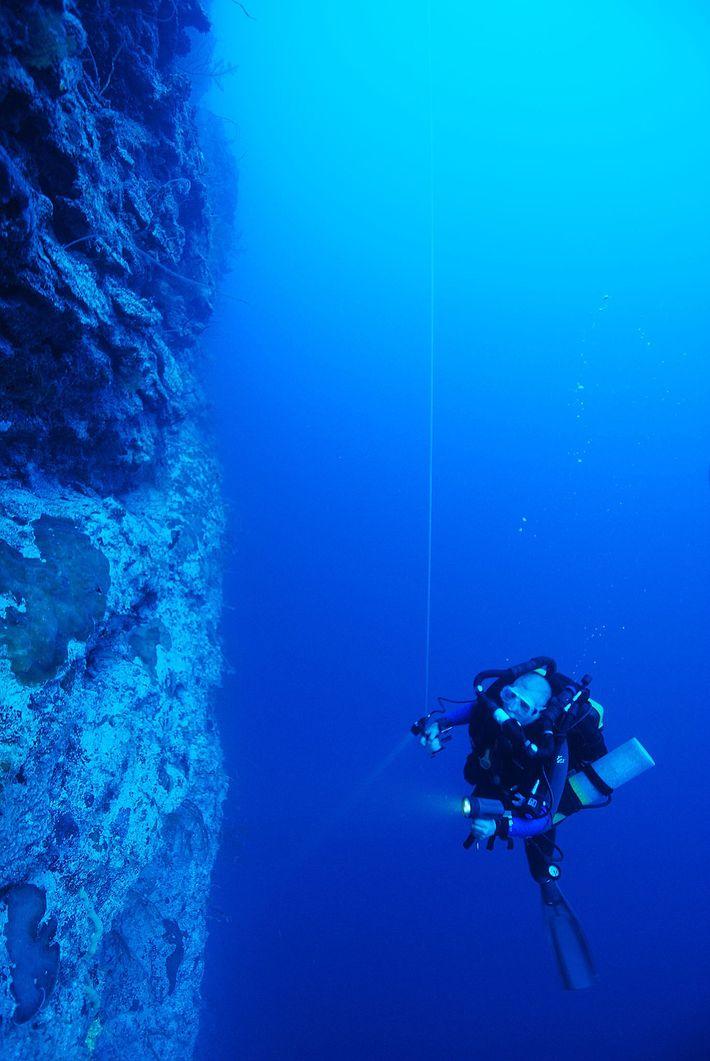 Ocean Space Habitat
