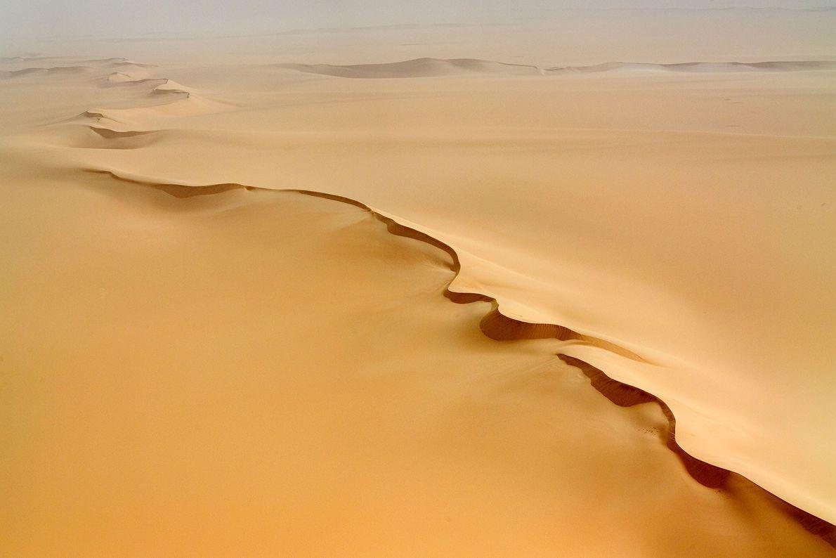 Reservas naturales del Air y el Teneré, Níger