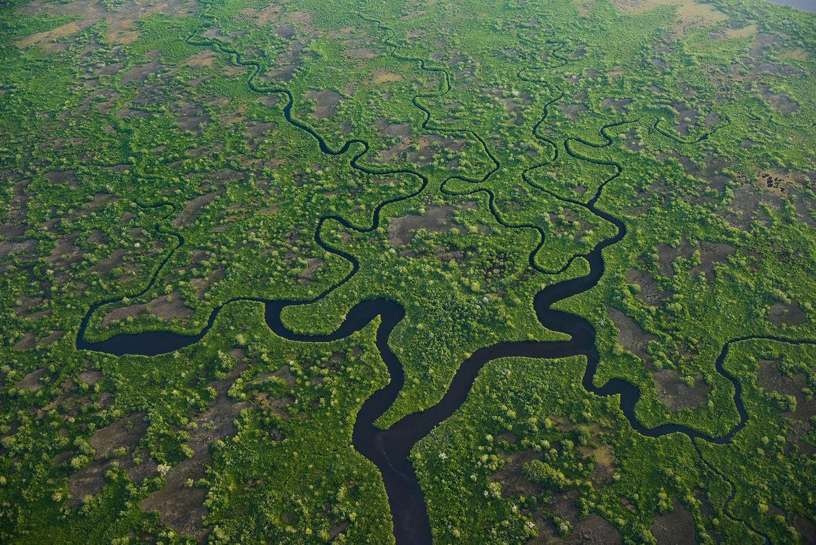Parque nacional de los Everglades, Estados Unidos