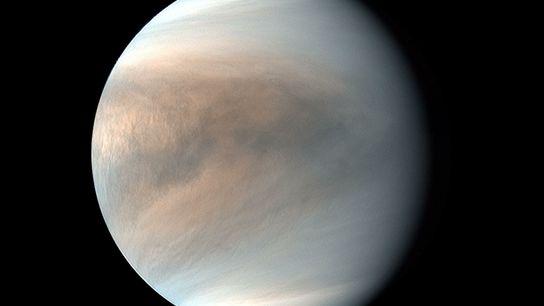 Una imagen en falso color de Venus sacada en luz ultravioleta por la sonda Akatsuki de ...