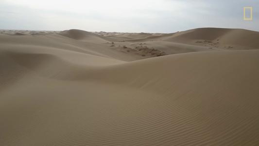 «La Gran Muralla Verde»: la lucha contra la desertificación en China