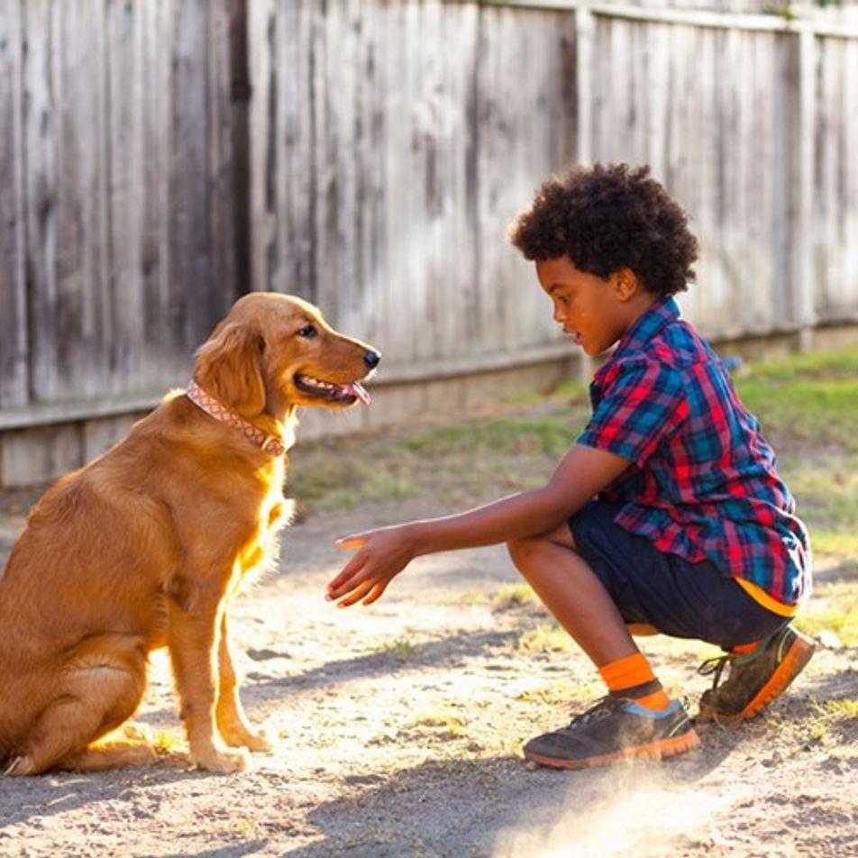 Ideas de voluntariado para niños (incluso desde casa)