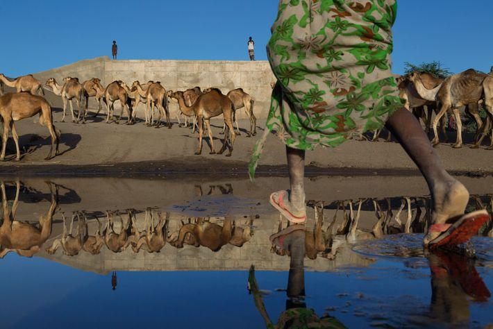 Río Awash, Etiopía