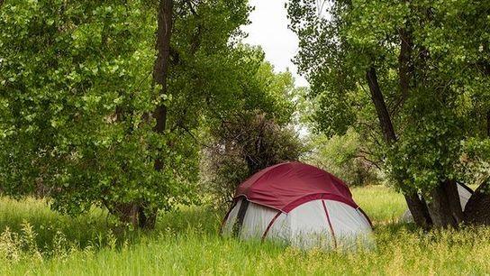 Fotografía de personas acampando en Cherry Creek State Park, Colorado.