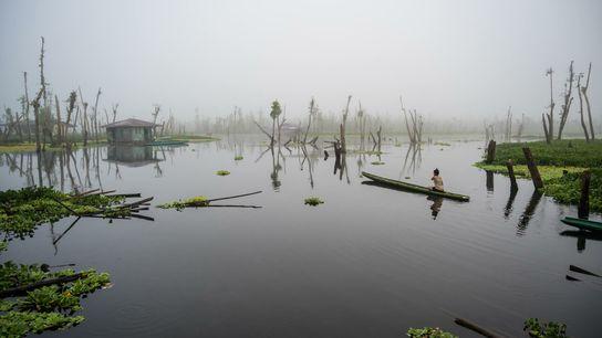 Fotografía de un humedal en Agusan