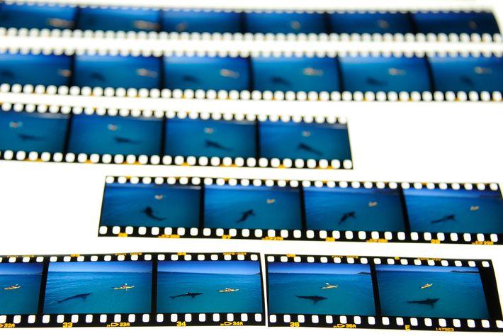 Un rollo de película fotográfica