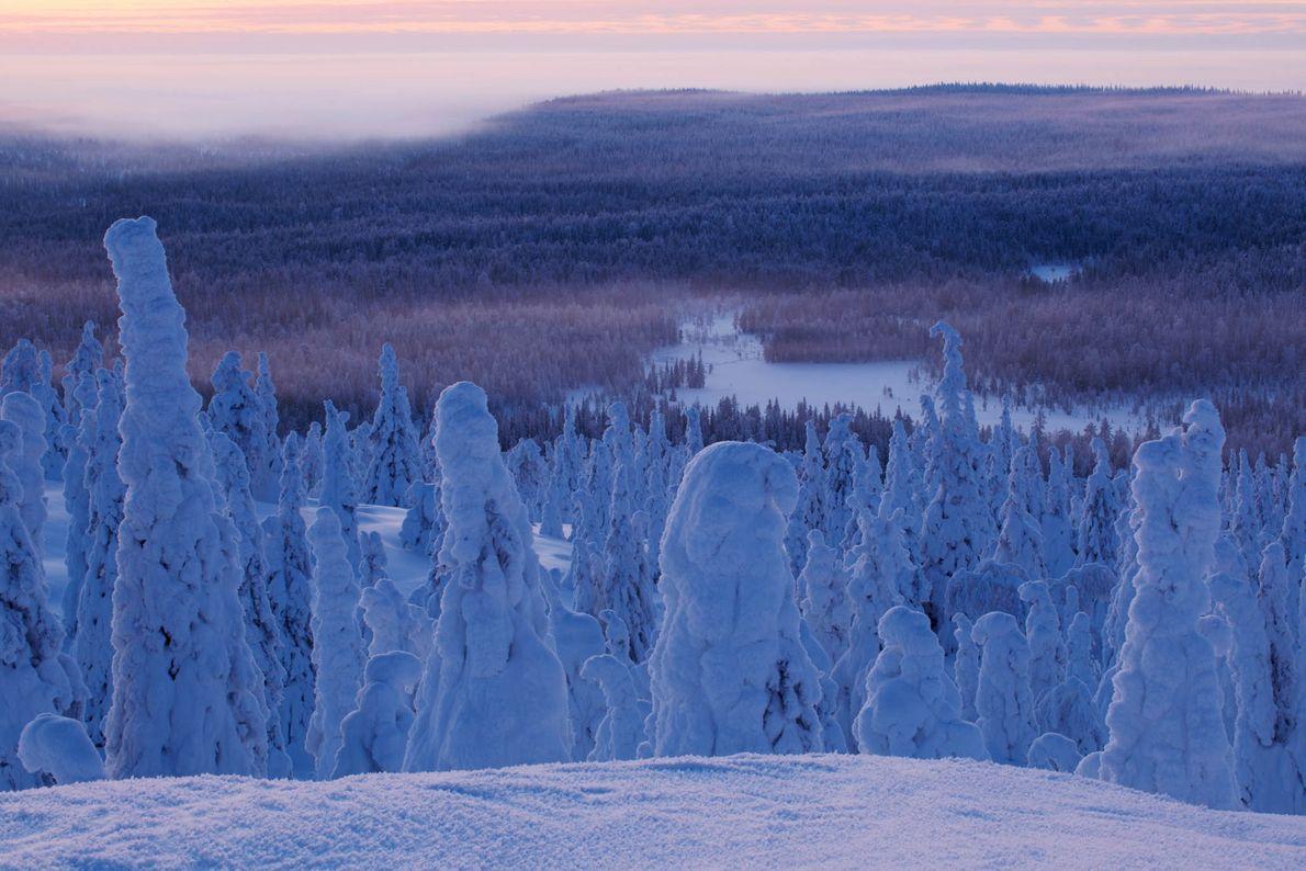Riisitunturi, Finlandia