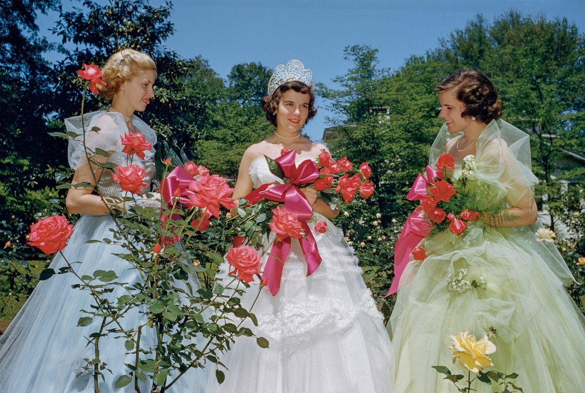 1953, GEORGIAEn la muestra de rosas anual de Thomasville, Georgia, la reina del festival y sus …