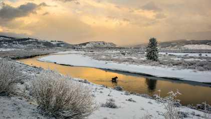 Nieva en Yellowstone el primer día de verano