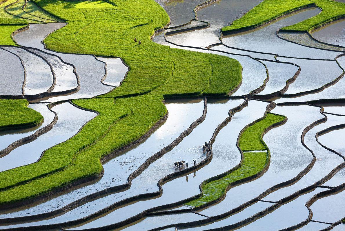 Tu Le, en Vietnam